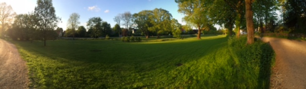 The village meadow with playground