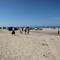 The west coast beach