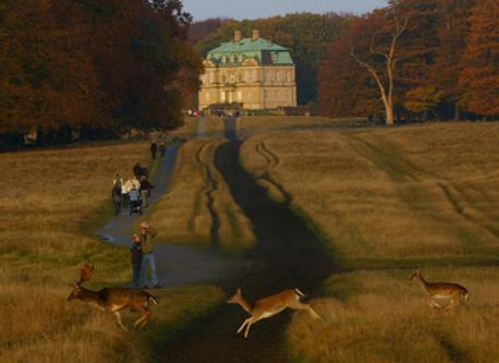 Royal Hunting Grounds (Dyrehaven) Not far north of Copenhagen