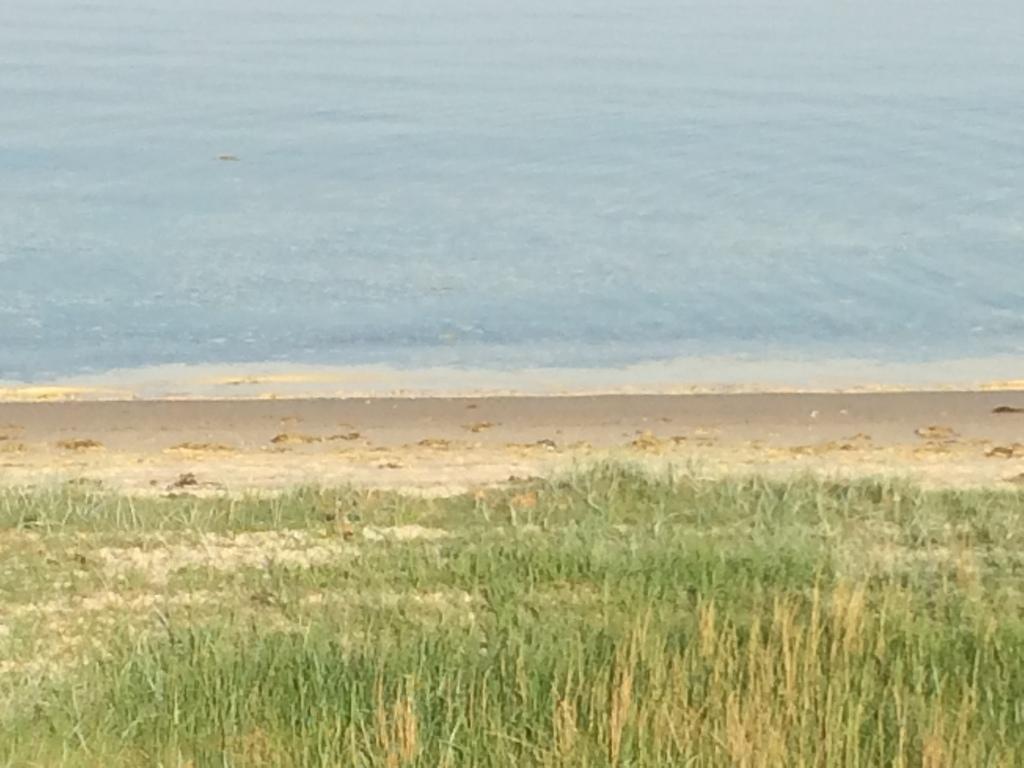 Ajstrup Beach