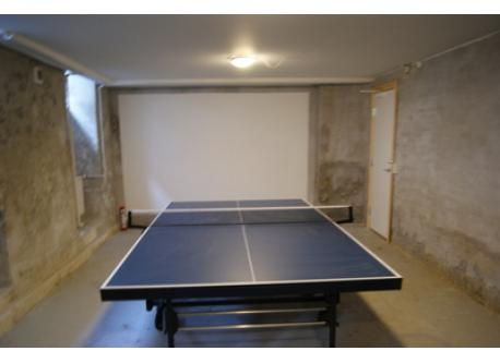 Table tennis in basement