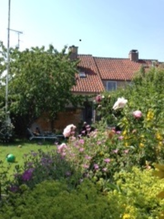 Our house and main garden