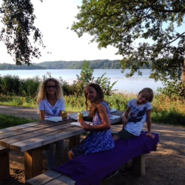 Pic nic by Bagsværd Sø (lake), 500 metres from the house