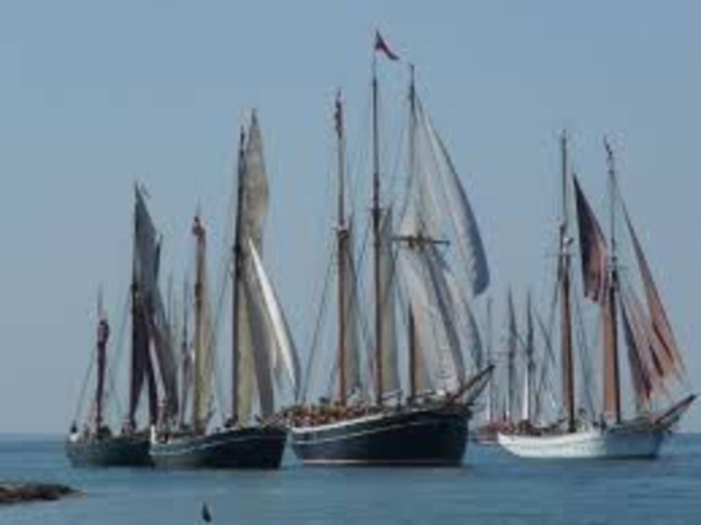 Racing of old wooden ships in July