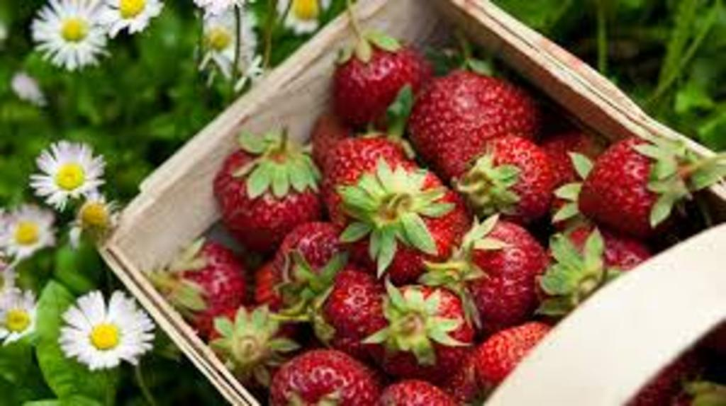 Sweet aromatic strawberries from the garden :-) Enjoy!