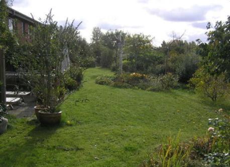 Our garden, Hillerød