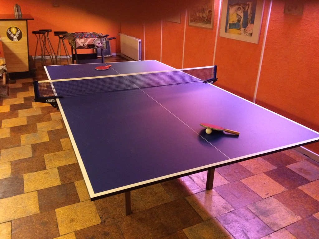 Basement - Table Tennis