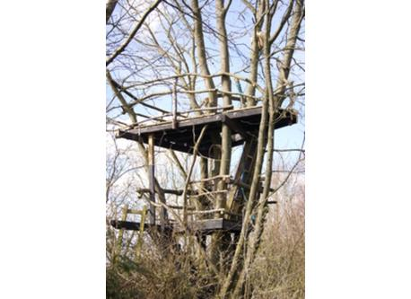 The 'hut in the tree'