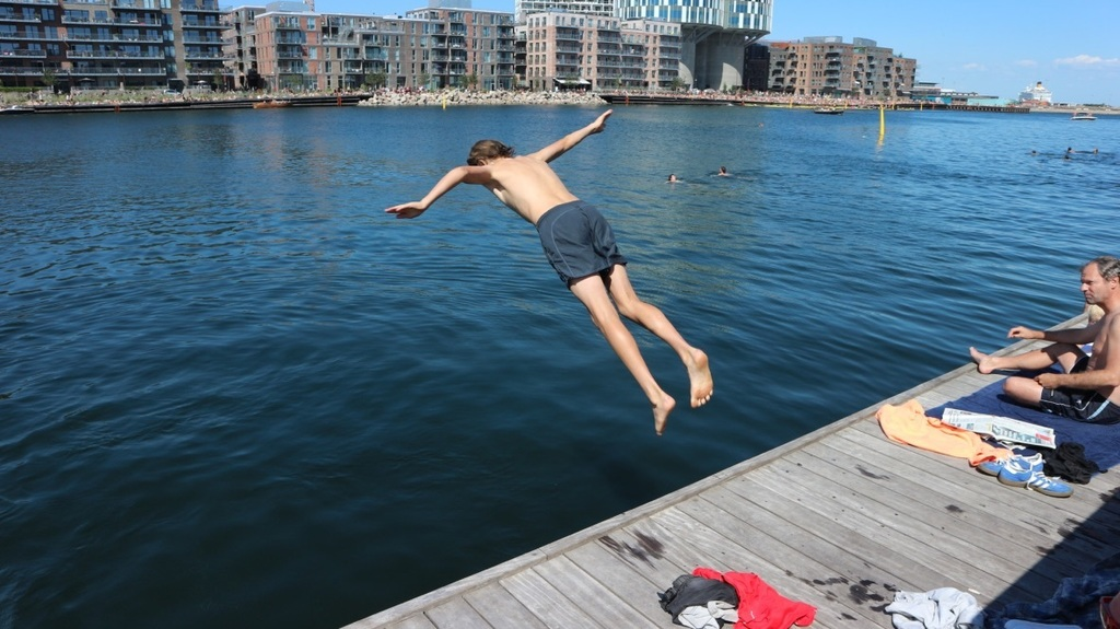 Take a swim in Nordhavn 5 minutes from our home