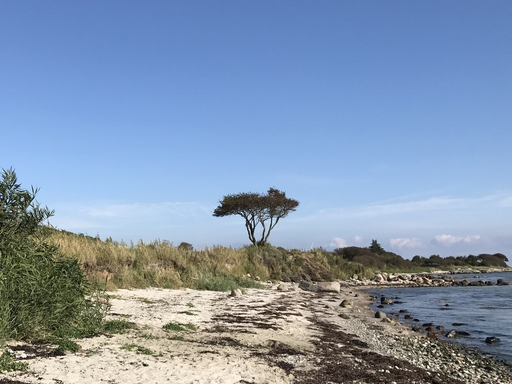 Baltic Sea - Flensburger Förde