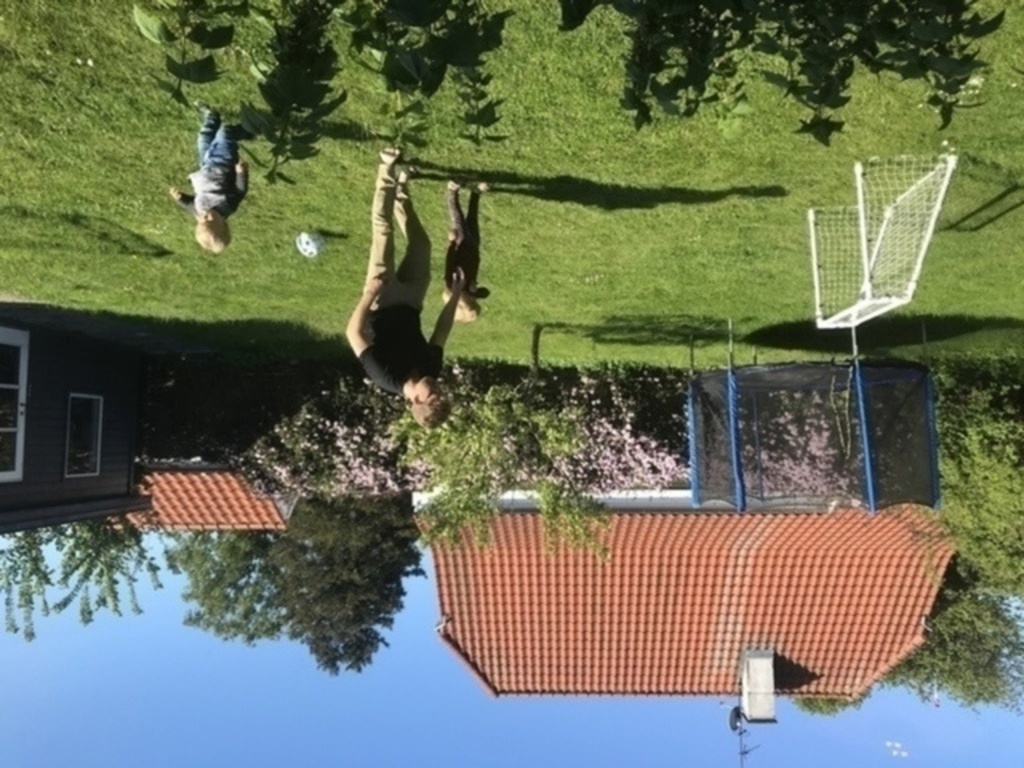 The backyard with trampoline and football goals