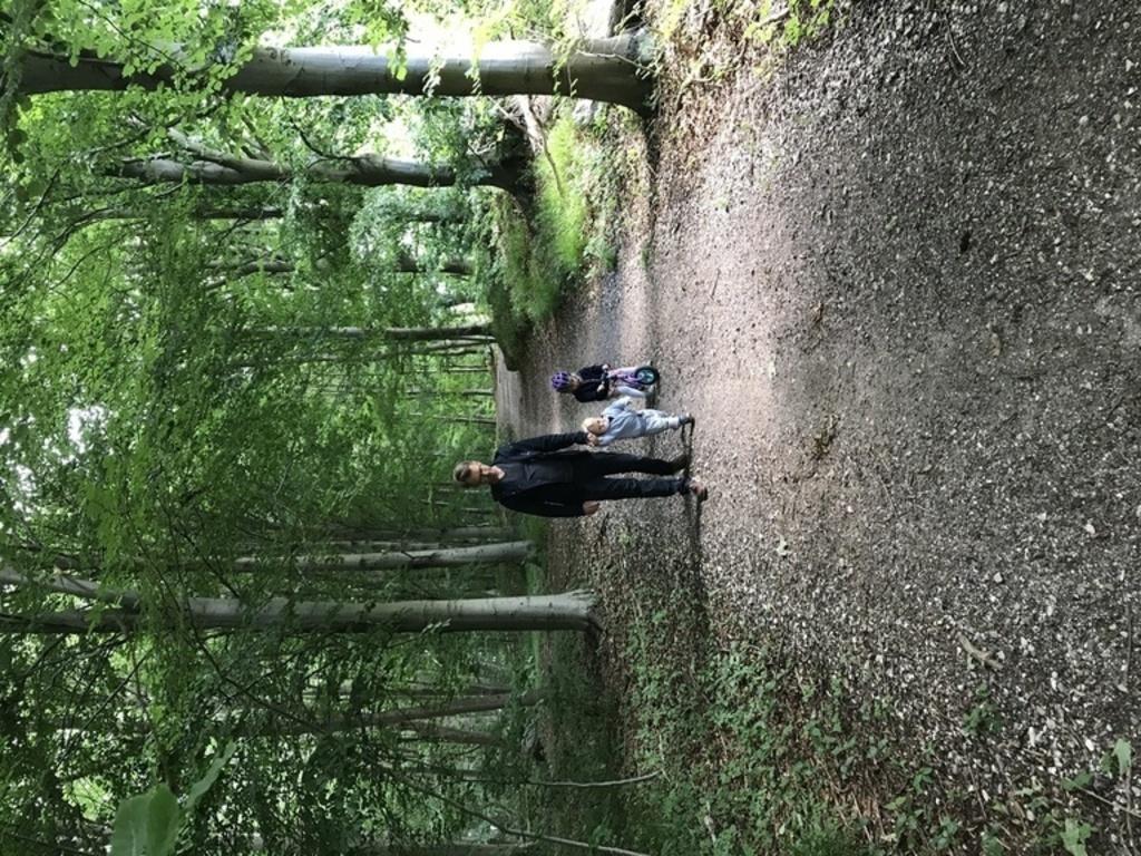 Egebæksvang Forest (3 min walk)