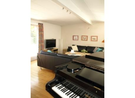 grand piano and living room
