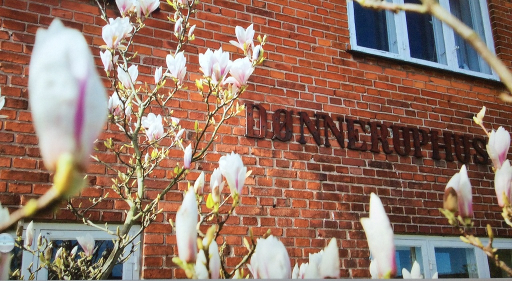 Dønnruphus - the name of our house Copenhagen