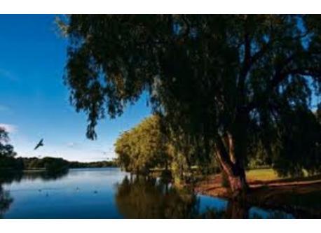 Utterslev mose - lakes 1 km away