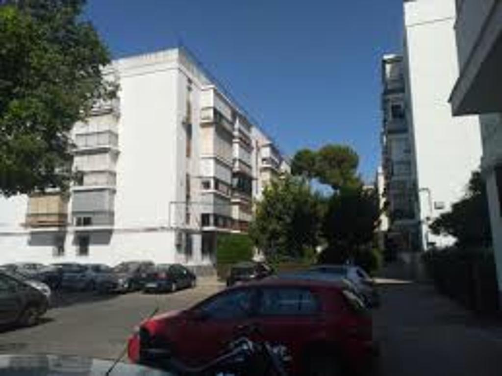 Campos de soria, our neighbourhood