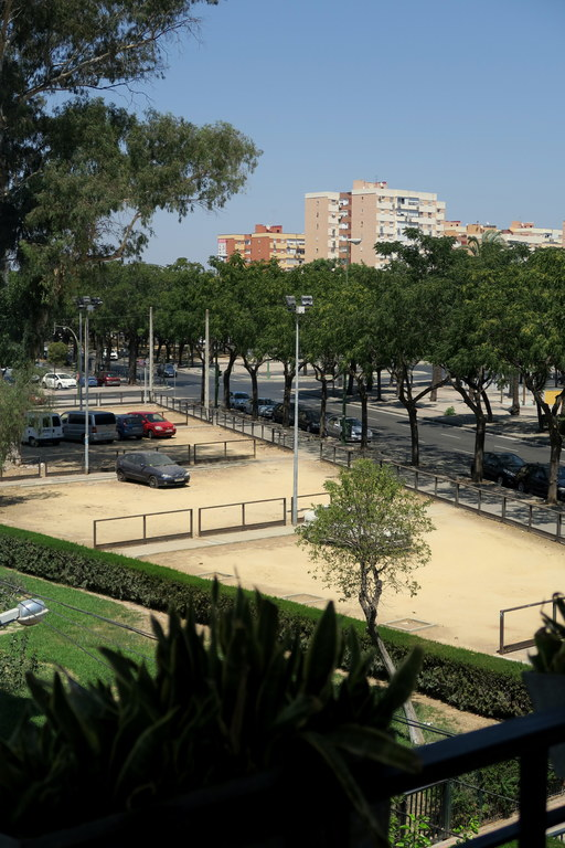 the public ground where you can park your car for free