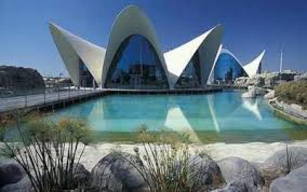 Oceanogràfic (City's Aquarium).  One of the most visited tourist sites of Valencia