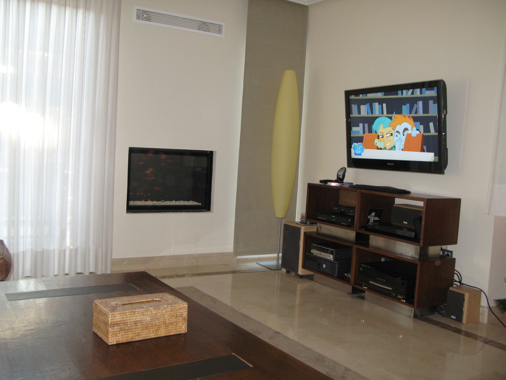 Chimney and tv at the living