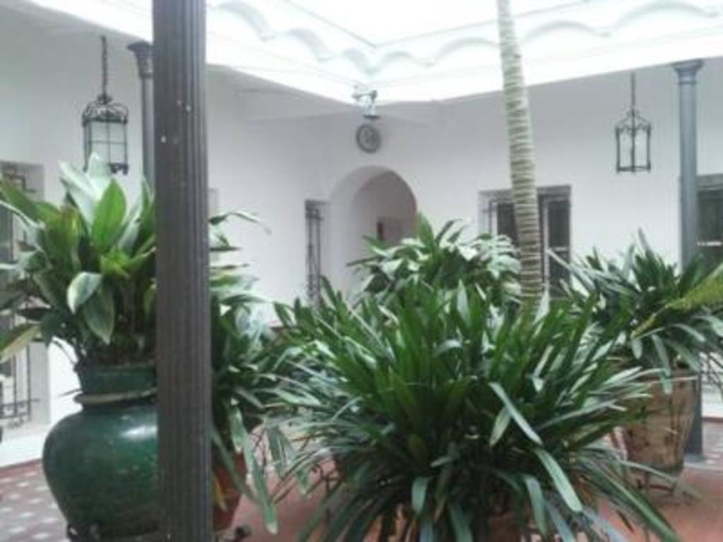 Sanlucar de Barrameda (cadiz) Patio Andaluz