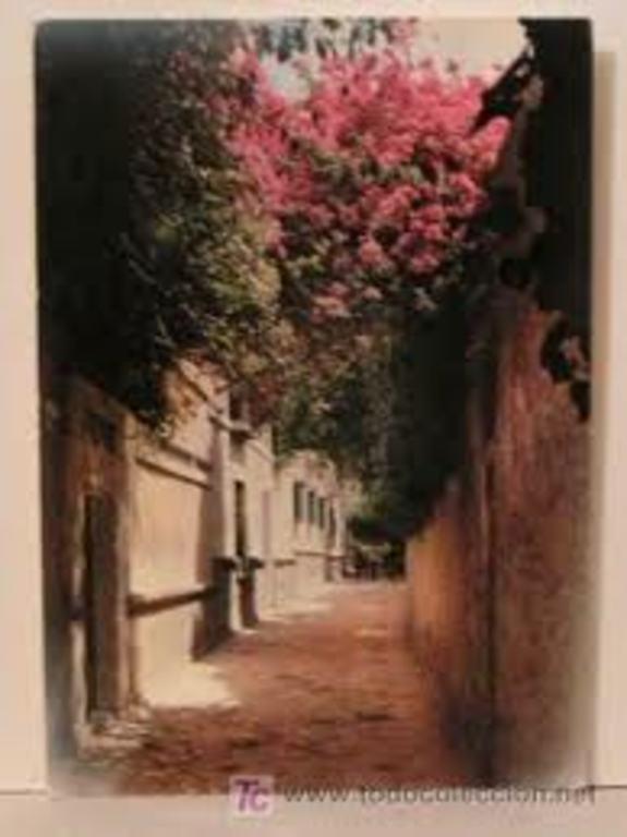 Sevilla  Santa Cruz neigborhoods