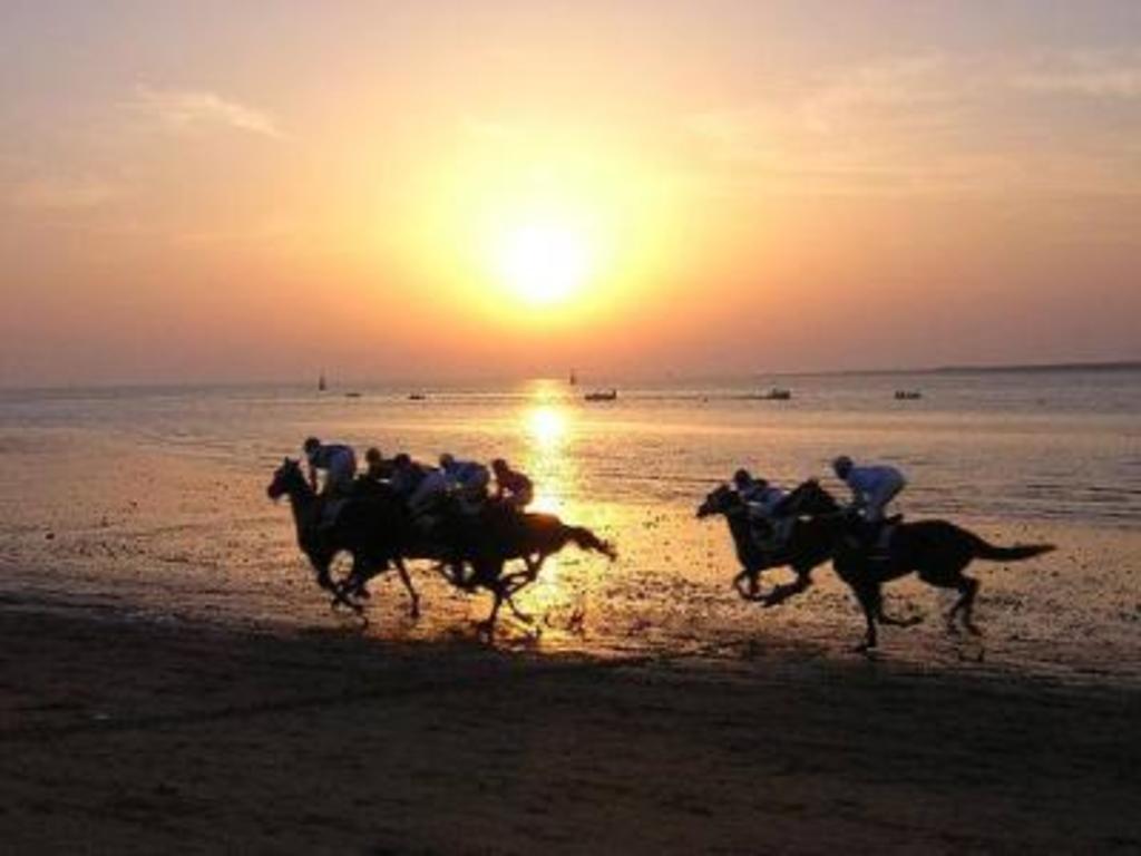 Old horses race. Sanlucar de Barrameda