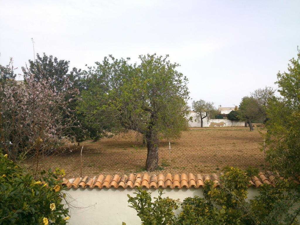vista des de la casa