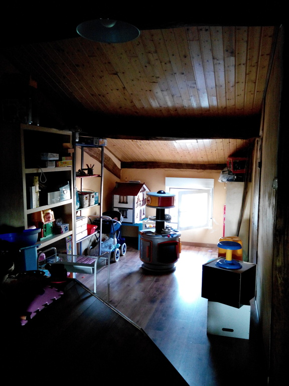Attic play room