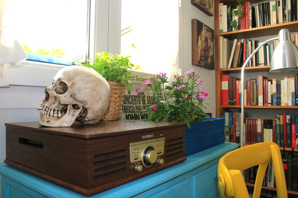 Our record player with our friend Hamlet on top