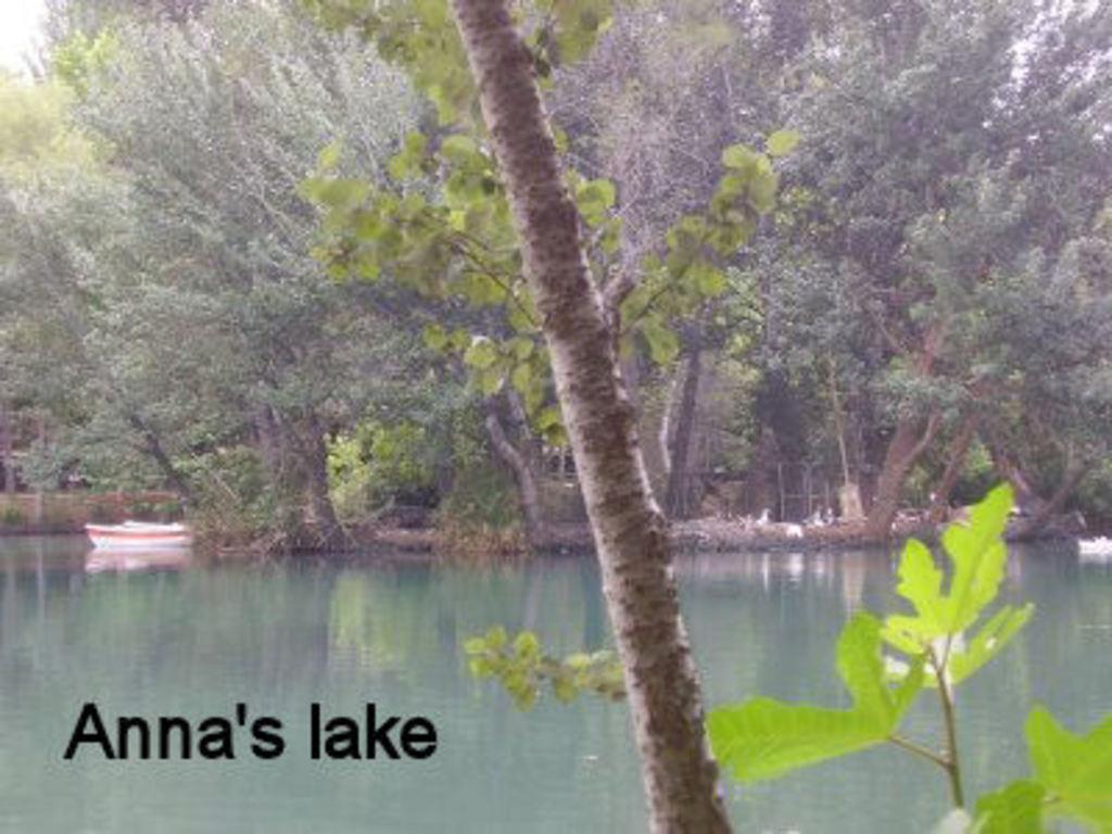 Anna's lake