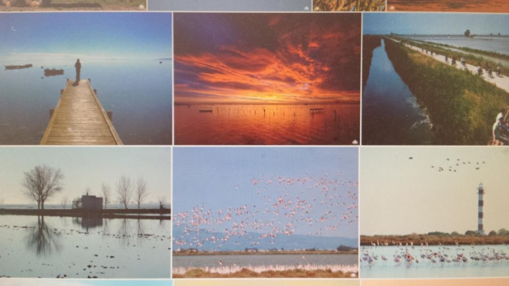 Delta del Ebro National Park