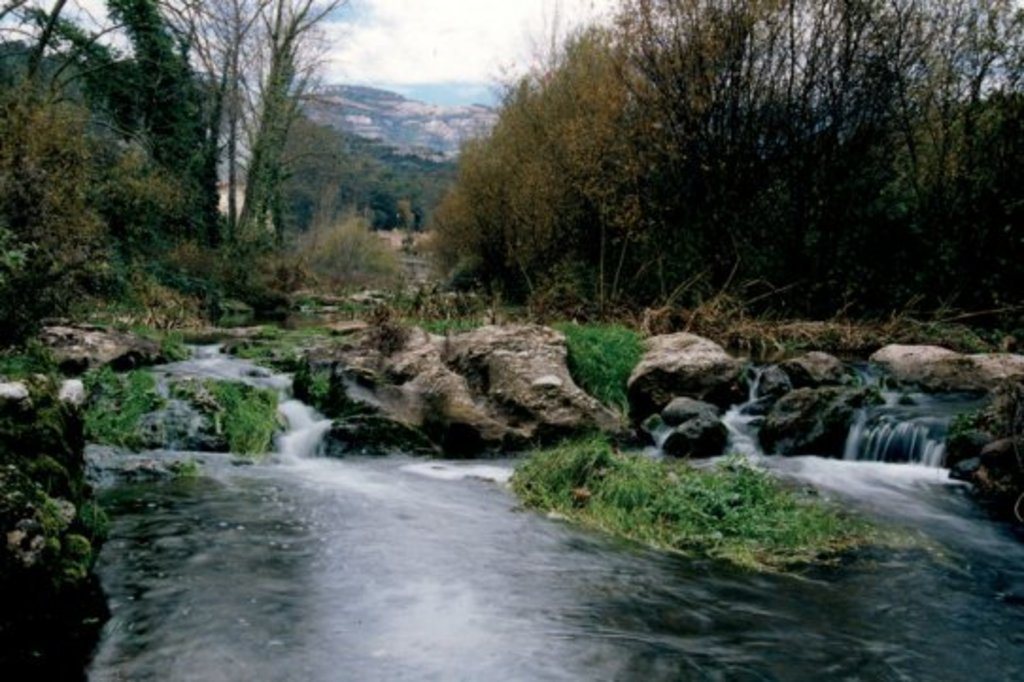 The river Ripoll