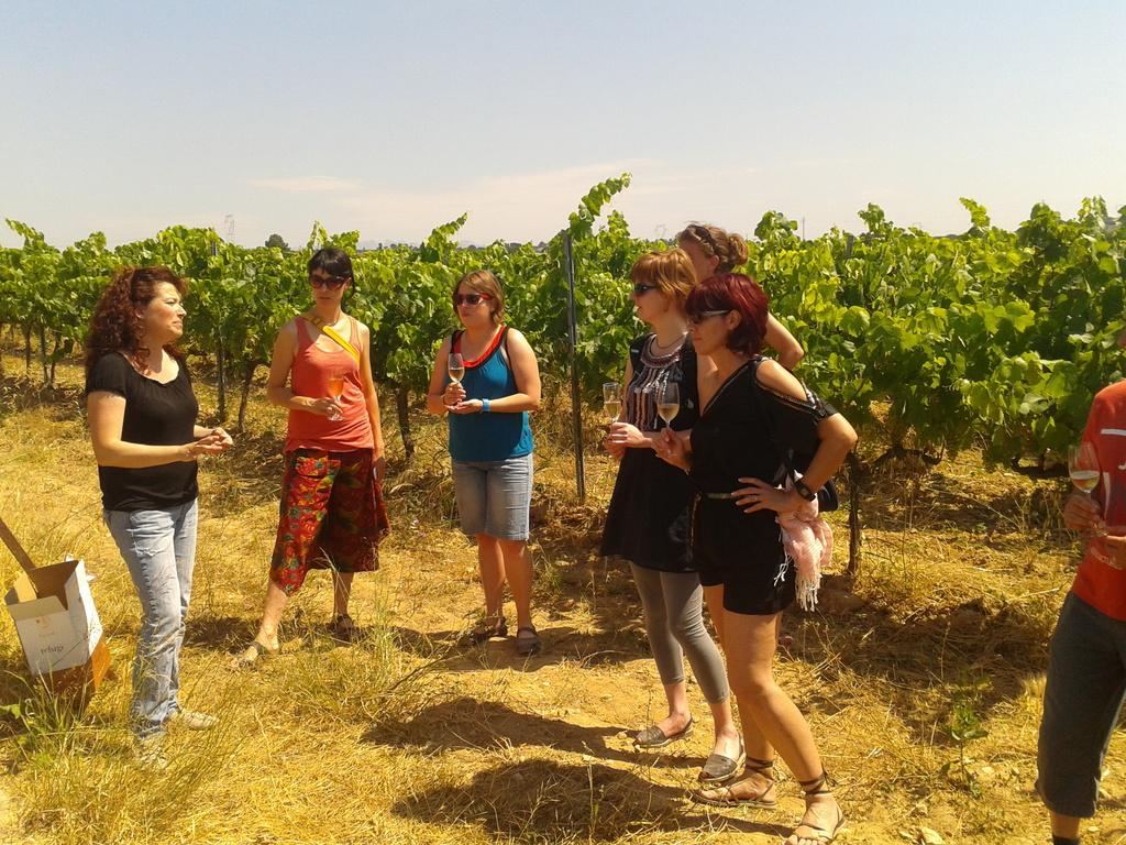 Winetasting in the vineyards!