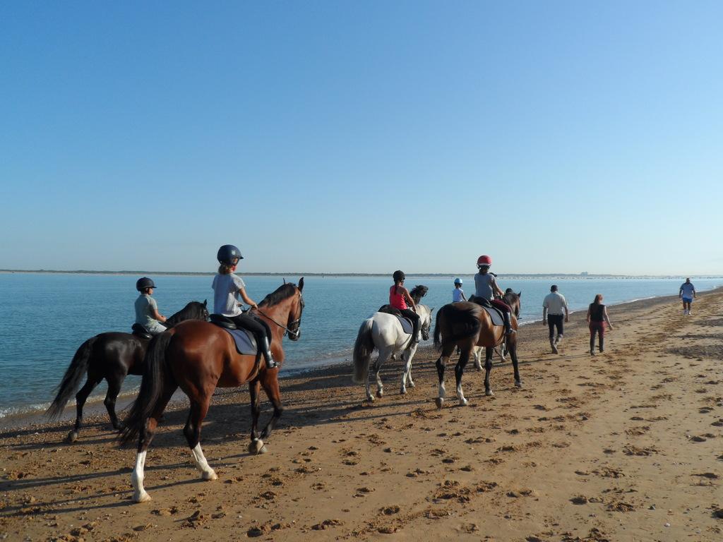 paseo a caballo por la playa, al fondo el Coto Doñana