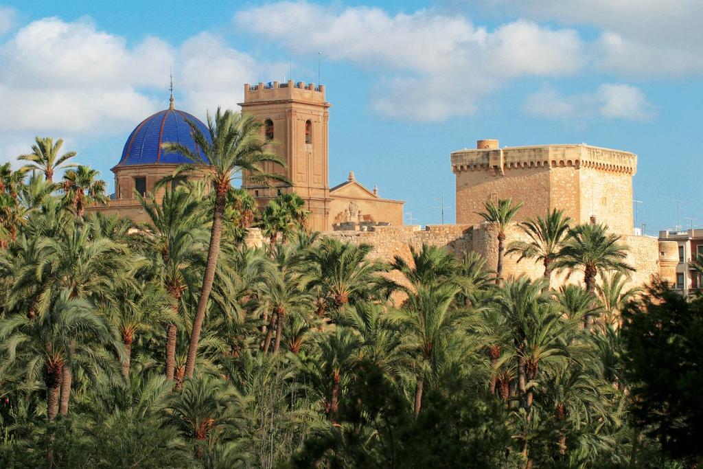 Elche located a 15 km from Alicante