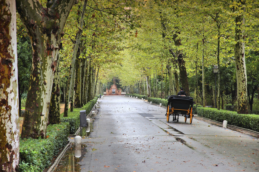 Maria Luisa Park, 5 min walk