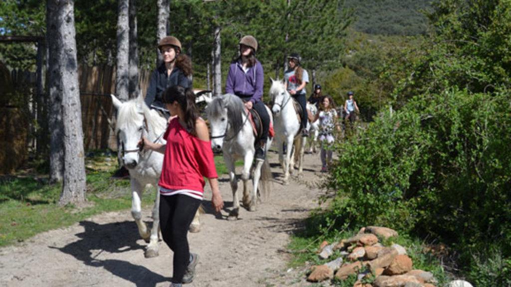 horse rinding at arbayun