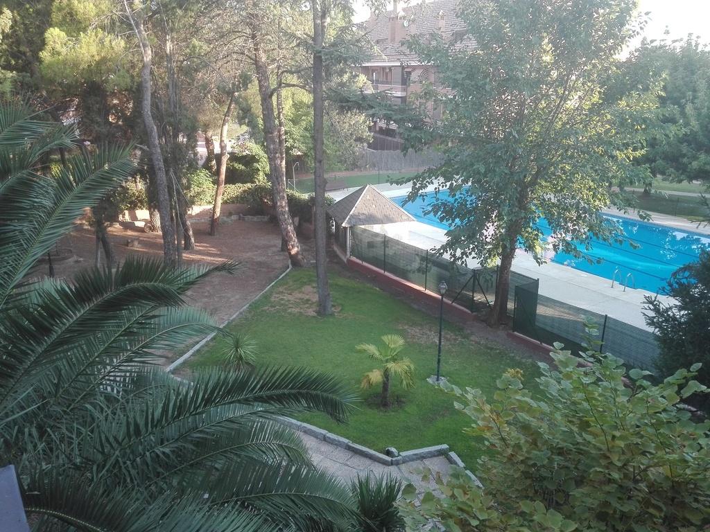 Vista de la piscina desde la casa.