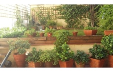 Our patio last spring...