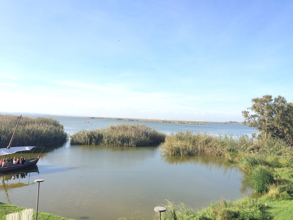 lake of Albufera
