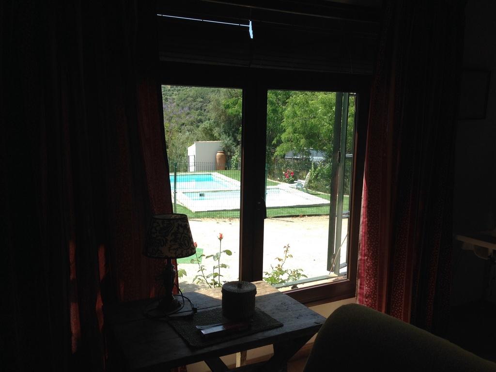 Vistas de las piscinas desde el salón