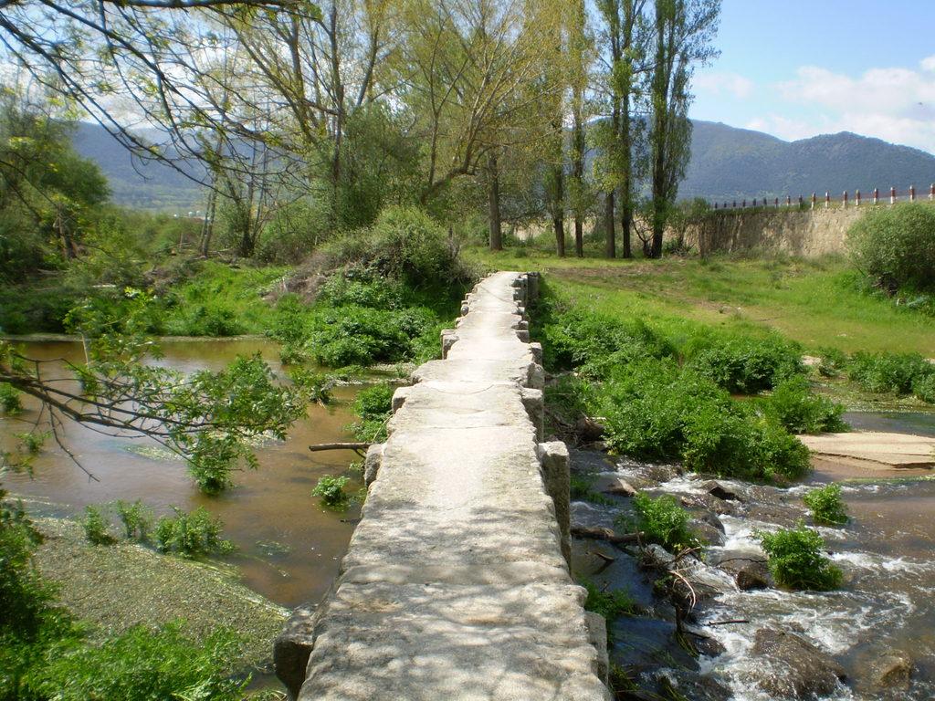 Corneja river