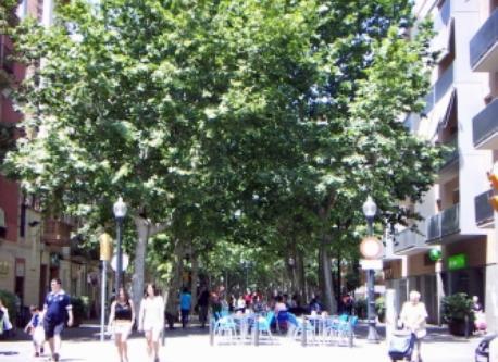"the ""Rambla de Poblenou"" (3' on foot)"