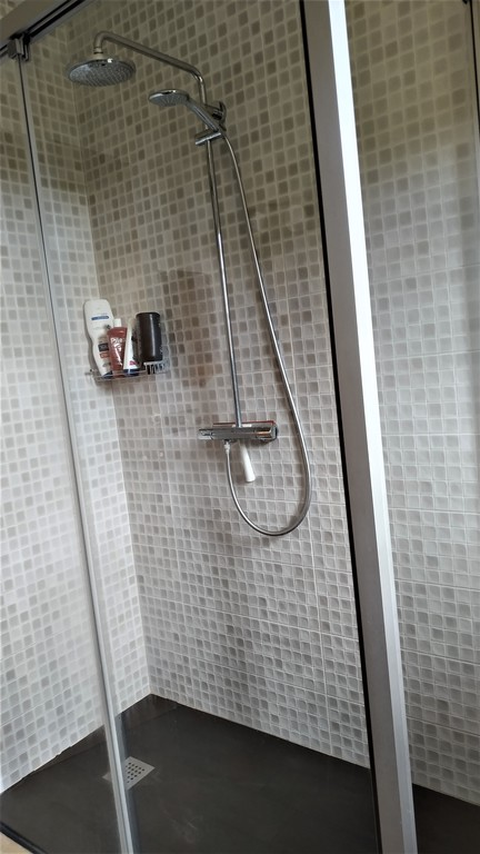 Shower of the big toilet