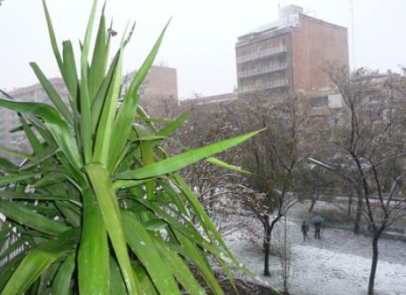 Snowing in Barcelona