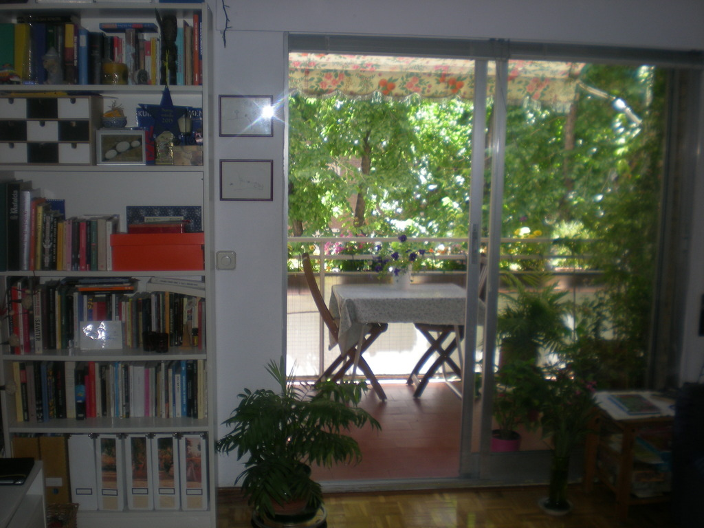 livingroom with terrace