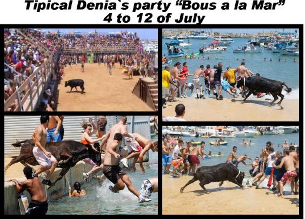Bous a la mar Denia's tipical party
