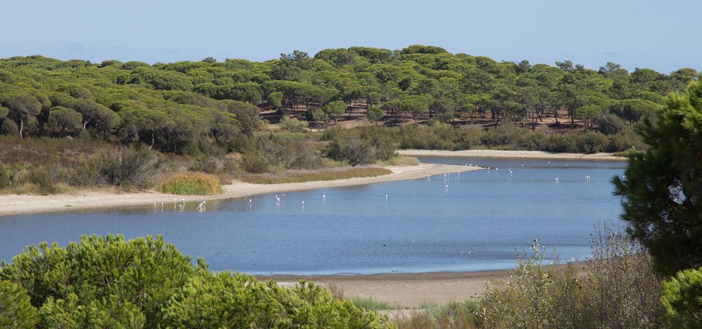 El Portil Lagoon