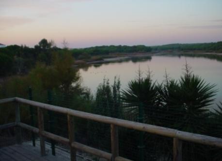 Alrededores. Laguna del Portil