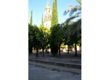 Mezquita-Catedral1